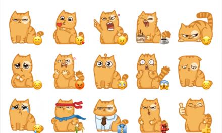 Persik Cat
