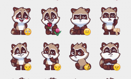 Raccoon sticker set!