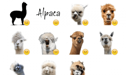 Alpaca Sticker Pack